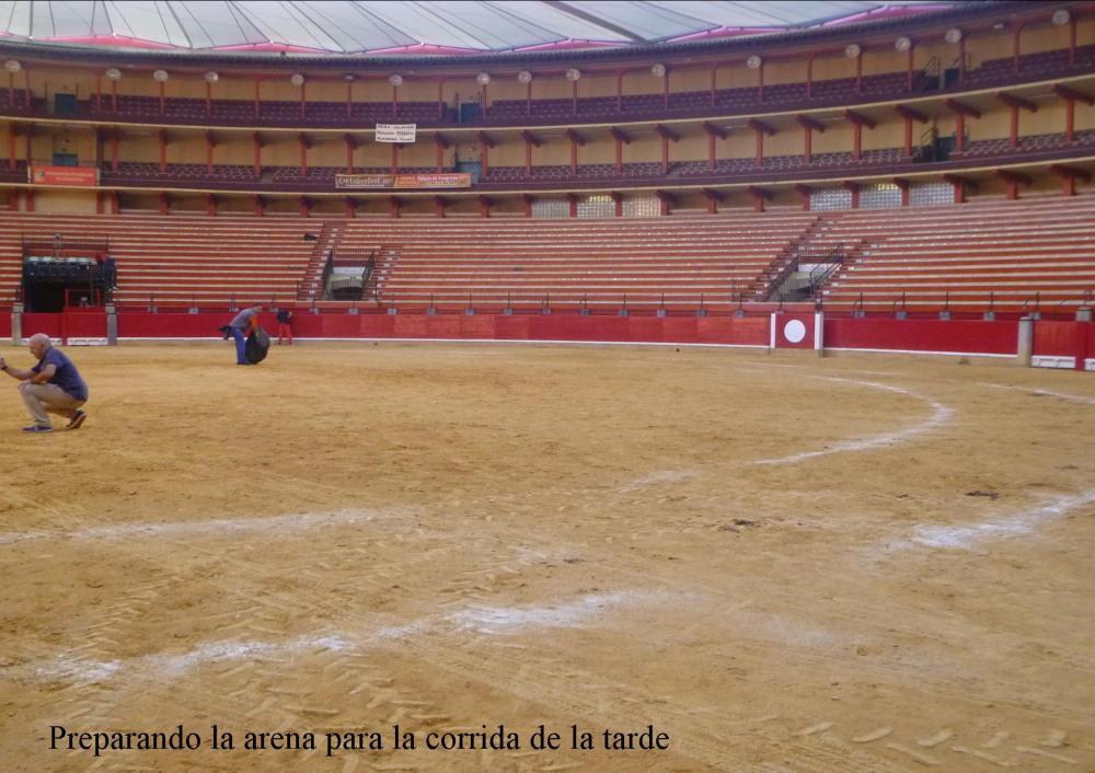 plaza de toros 13